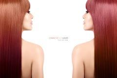 Concetto di bellezza di colore dei capelli Donna con la pendenza lunga splendida ha Fotografie Stock Libere da Diritti