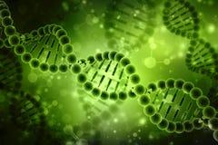 Concetto di biochimica con la molecola del DNA isolata nel fondo bianco, rappresentazione 3d Fotografie Stock Libere da Diritti