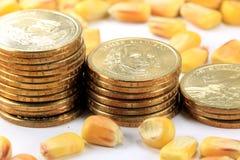 Concetto di commercio dei prodotti - valuta degli Stati Uniti delle monete di oro con cereale giallo fotografia stock