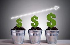 Concetto di crescita del dollaro di affari Immagini Stock Libere da Diritti