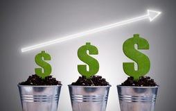 Concetto di crescita di pianta del dollaro Immagini Stock Libere da Diritti
