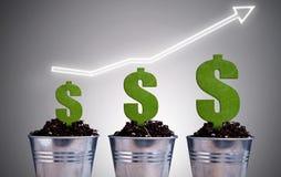 Concetto di crescita di pianta del dollaro Fotografie Stock Libere da Diritti