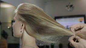 Concetto di cura di capelli Un parrucchiere dimostra i capelli del ` s del cliente archivi video