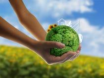 Concetto di Eco