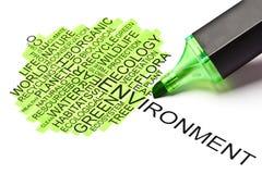 Concetto di ecologia con la penna di punta ritenuta verde Immagini Stock Libere da Diritti