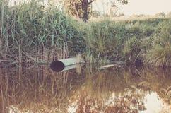 Concetto di ecologia: il tubo per fognatura versa fuori al lago/acqua che zampilla dalla fogna al lago fotografia stock