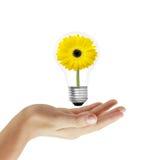 Concetto di energia di Eco Immagini Stock