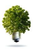 Concetto di energia di Eco Fotografie Stock Libere da Diritti