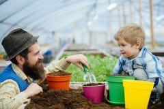 Concetto di fertilit? del suolo esamini la qualità di fertilità del suolo buona fertilità del suolo in serra moderna fertilità de fotografie stock libere da diritti