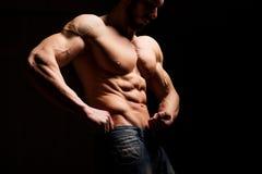 Concetto di forma fisica Torso muscolare e sexy del giovane che ha grosso pezzo maschio perfetto dell'ABS, del bicipite e del pet immagine stock
