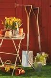 Concetto di giardinaggio Fotografie Stock Libere da Diritti