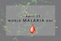 Concetto di giorno di malaria del mondo fotografia stock libera da diritti