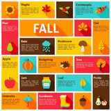 Concetto di Infographic di caduta Fotografie Stock
