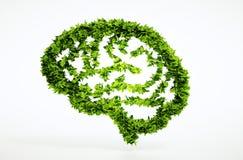 Concetto di intelligenza della natura di Eco Fotografie Stock