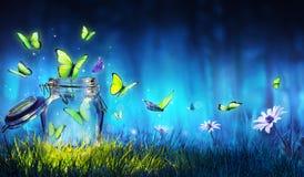 Concetto di libertà - volo magico delle farfalle dal barattolo illustrazione vettoriale