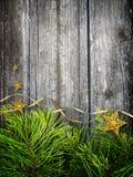 Concetto di Natale dei rami e delle stelle del pino Immagine Stock