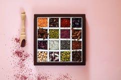 Concetto di NThe dei prodotti biologici e delle spezie dei cereali su fondo rosa Condimenti per il cibo, fagioli, spazio della co immagini stock