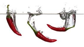 Concetto di pepe rosso in acqua Fotografie Stock Libere da Diritti