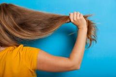 Concetto di problema di perdita di capelli, capelli nocivi asciutti immagini stock