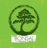 Concetto di progetto creativo di giardinaggio di vettore del club dei bonsai Fondo approssimativo di Zen Tree Icon Illustration O Fotografia Stock Libera da Diritti