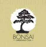 Concetto di progetto creativo di giardinaggio di vettore del club dei bonsai Fondo approssimativo di Zen Tree Icon Illustration O Immagini Stock