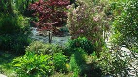 Concetto di progetto del paesaggio Giardino fertile con gli alberi e le piante variopinte nel giorno soleggiato di estate fotografia stock