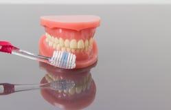 Concetto di pulizia e di igiene dentale Immagini Stock