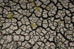 Concetto di riscaldamento globale, caldo e del clima secco, clima del cambiamento, terra per le colture perenni royalty illustrazione gratis