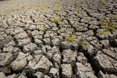 Concetto di riscaldamento globale, caldo e del clima secco, clima del cambiamento, terra per le colture perenni illustrazione vettoriale
