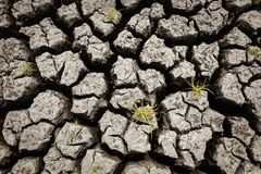 Concetto di riscaldamento globale, caldo e del clima secco, clima del cambiamento, terra per le colture perenni illustrazione di stock