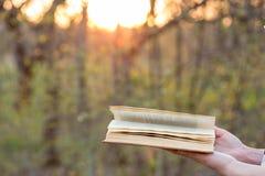 Concetto di saggezza e di istruzione - libro aperto nell'ambito di luce solare Immagine Stock