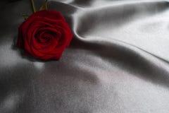 Concetto di San Valentino, concetto di giorno di madri, rosa rossa su fondo grigio di seta Fotografie Stock