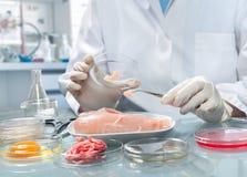 Concetto di sicurezza alimentare Immagini Stock