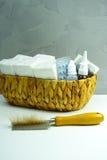 Concetto di sollievo di allergia, animali domestici domestici capelli e polvere come allergeni Fotografia Stock