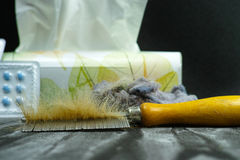 Concetto di sollievo di allergia, animali domestici domestici capelli e polvere come allergeni, m. Fotografie Stock