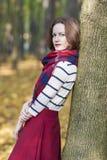 Concetto di stile: La giovane femmina castana caucasica dentro ha fatto a Measur Immagine Stock Libera da Diritti