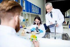 Concetto di team-building e di lavoro di squadra Un gruppo di tre scienziati i Immagini Stock