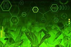 Concetto di tecnologia di ecologia - formule chimiche Fotografia Stock