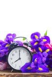 Concetto di tempo di primavera Fotografia Stock Libera da Diritti