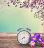 Concetto di tempo di primavera Immagine Stock Libera da Diritti