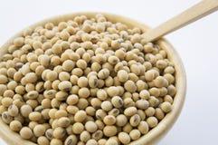 Concetto di verdure della soia di nutrizione del primo piano della soia della soia Fotografia Stock