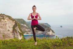 Concetto di yoga Posa dell'albero con namaste Fotografia Stock