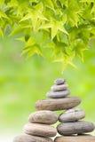 Concetto di zen, fogli freschi di verde e ciottoli Fotografie Stock