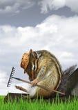 Concetto divertente del giardiniere, tamia con il rastrello e cappello Immagini Stock Libere da Diritti