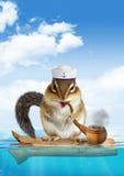 Concetto divertente del marinaio, oceano di galleggiamento della tamia animale Fotografia Stock