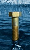 Concetto ecologico: Un singolo bullone massiccio in seguito all'acqua Immagini Stock Libere da Diritti
