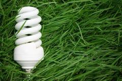 Concetto economizzatore d'energia. Fotografia Stock Libera da Diritti