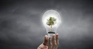 Concetto economizzatore d'energia Fotografie Stock Libere da Diritti