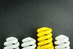 Concetto economizzatore d'energia di affari delle lampadine di differenziazione Fotografie Stock Libere da Diritti