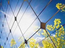 Concetto a energia solare Fotografie Stock